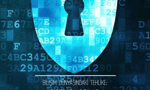 Bilişim Dünyasındaki Tehlike : Siber Saldırılar – KOBİ AKTÜEL