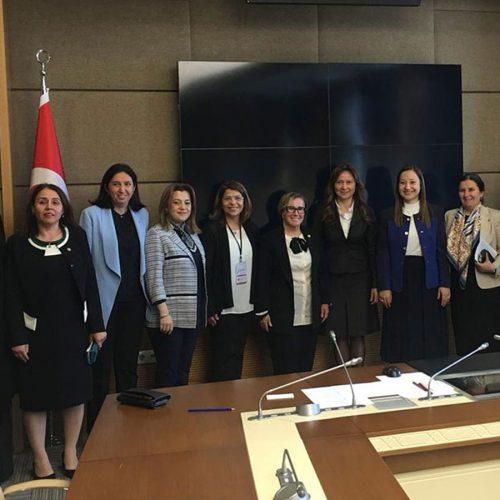 TBMM Kadın Erkek Fırsat Eşitliği Komisyonu Toplantısı Gerçekleştirildi